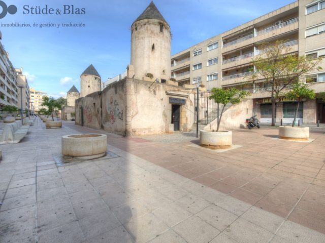 For sale: Mill in Palma